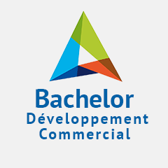 BACHELOR Développement Commercial et Marketing en alternance à Toulouse